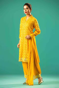 Picture of Salwar Suit( 3pc)